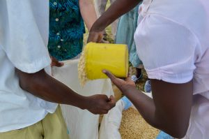 Families receive basic food staples including maize, beans, rice and cooking oil